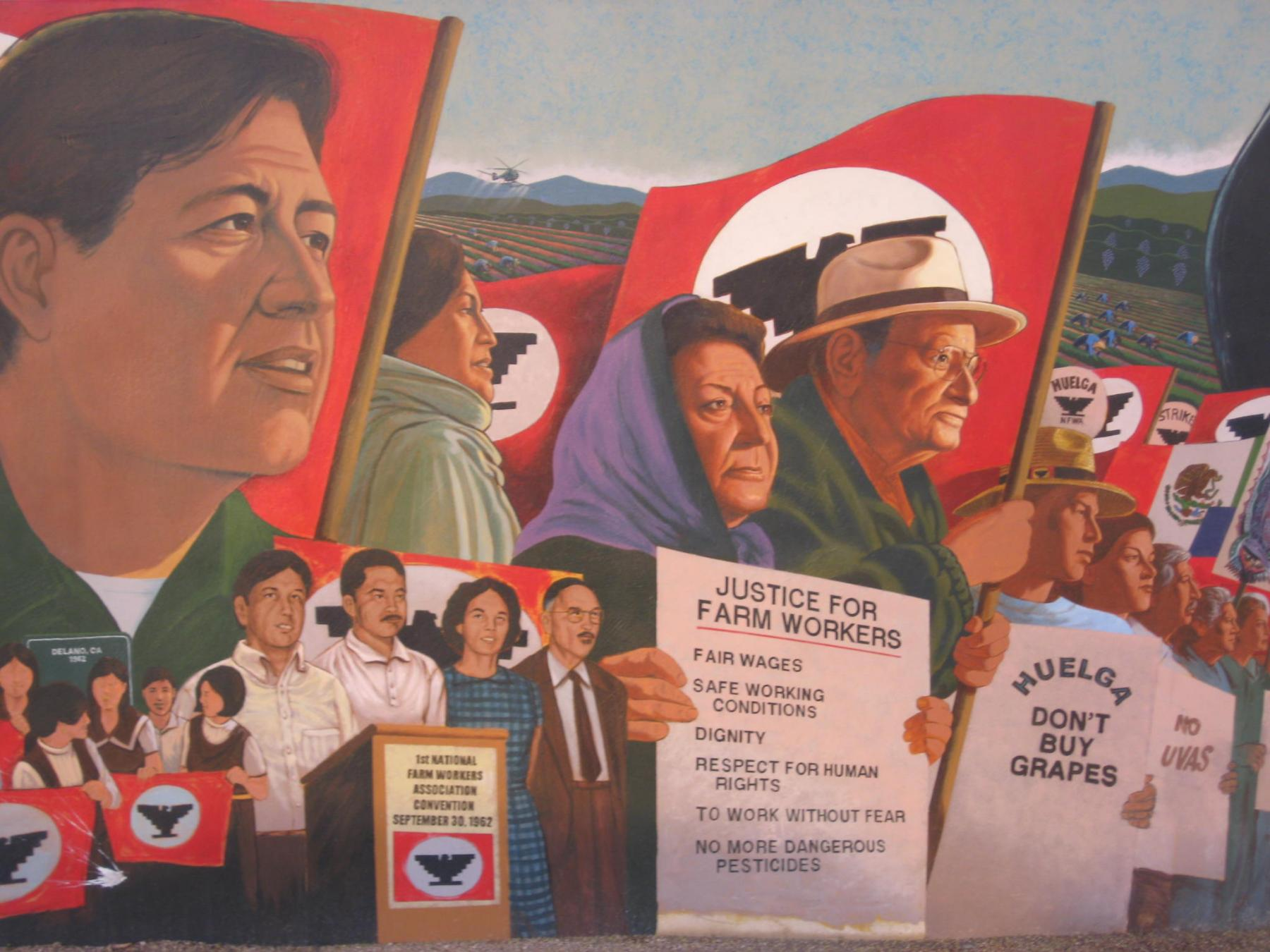 Fighting for Farm Workers' Rights: Cesar Chavez, the Delano